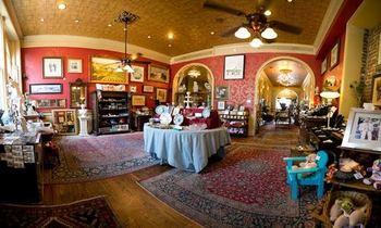 Cool Savannah Tours & Gifts